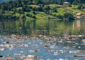 化肥径流中的磷正在污染全世界的淡水源