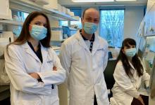 加拿大团队已证明了一种廉价分子可对抗导致淋病和球菌性脑膜炎