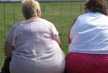 研究发现激素可以消除饥饿可能有助于解决肥胖症