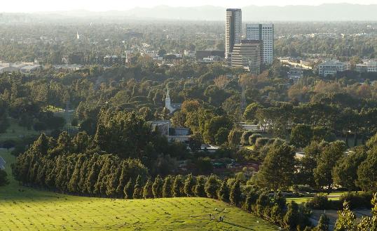 研究发现将主要城市的树木数量增加一倍将减少空气污染和能源消耗