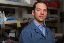 研究人员描绘出血液干细胞的奥秘