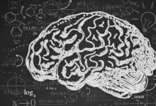 大脑中的钙失衡与阿尔茨海默氏症有关
