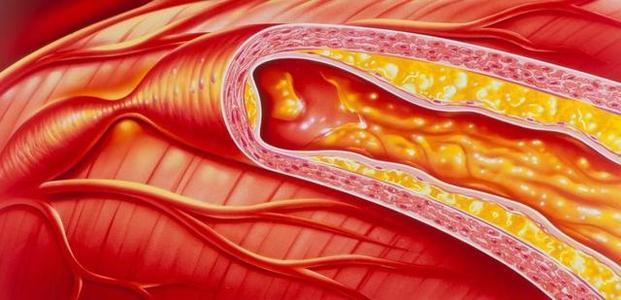我们所有人的血管内都有细小的毛发 顺应您的血液流动