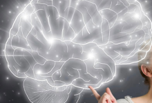 科学家将更了解您的大脑是如何存储信息的