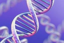 新的DNA扫描方法可以更快地诊断癌症和罕见疾病