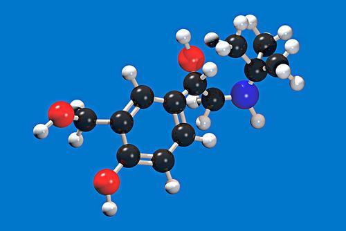 科学家发现调节肌肉适应运动的分子