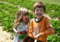 科学表明脏孩子的免疫系统更强