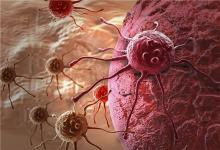 更多证据表明细胞的死亡可能成为癌症治疗的有前途的途径