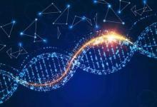 基因组学公司发布了用于检测癌症的关键生物标志物的全基因组图谱