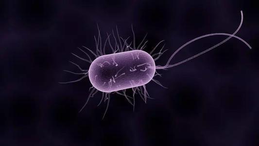 阴道微生物组如何影响艾滋病预防