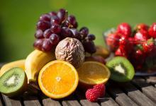 家庭种植的食物改善了儿童的健康
