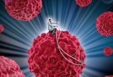 科学家提供了如何破坏与癌症相关的酶