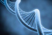 临床试验结果解决了对药物遗传学检测的担忧