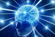 研究人员发现关于大脑如何做出努力活动的新观点