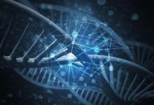使用基于DNA的服务来了解其患多种疾病的风险