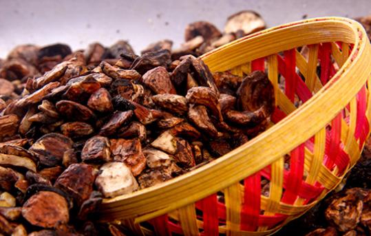 研究人员从坚果树种子的甲醇提取物中分离并鉴定了化合物