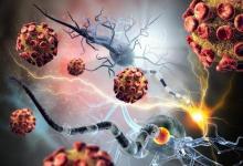 研究揭示了异基因移植中克隆性造血的惊人益处