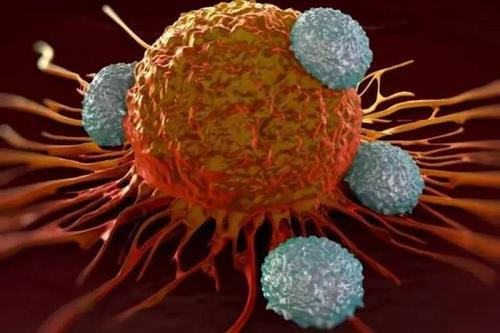 研究人员创建框架以帮助确定癌症突变的时机