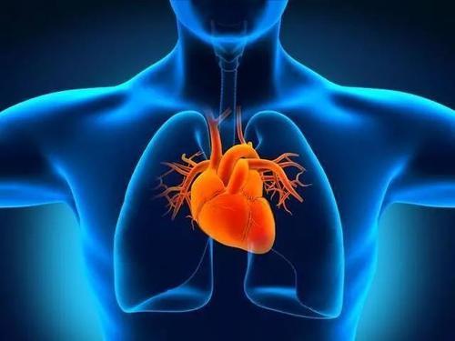 研究人员发现出生时皮肤疾病的遗传基础表明未来的心脏问题