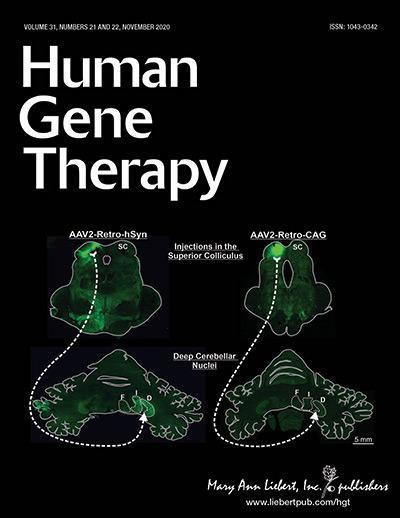 研究人员最近在大鼠中枢神经系统中发现的AAV衣壳