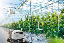 路线图为食品的未来与全球农业创新提供解决方案