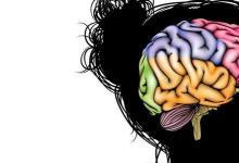 儿童时期的大脑功能和记忆技能如何相互影响