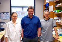 置于果蝇中的人类基因揭示了有关人类发育障碍的细节