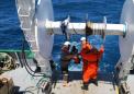 海洋研究人员发现对受保护的哺乳动物造成拖网噪声的风险