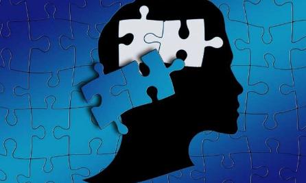有关自闭症亚型的新线索