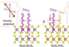 研究团队确定了二维异质双分子层中的二次谐波产生干扰