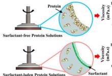 纤维蛋白的发现可能会改善生物打印 组织工程