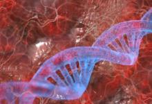 研究人员绘制了自由浮动DNA的潜在风险图
