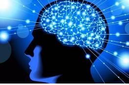科学家在孤独者的大脑中显示出一种特征