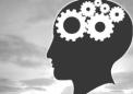 研究发现大脑中神经元交流的新方法