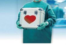 猪干细胞为移植人体器提供了新途径