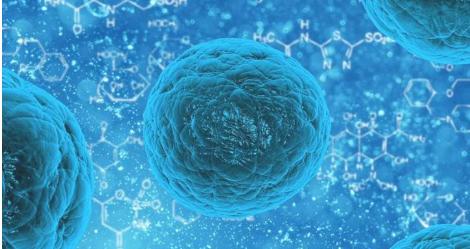 抗肿瘤蛋白的丢失可能导致对某些癌症疗法的抵抗