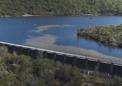 新的鱼道技术可以在坝壁上钓鱼
