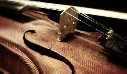 为什么早起是人生后期发展音乐技能的关键