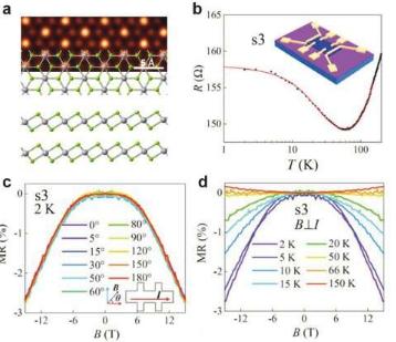 过渡金属二卤化物薄片中原子空位引起的局部磁矩