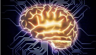 新的完整性概念推动了灵感来自大脑的计算