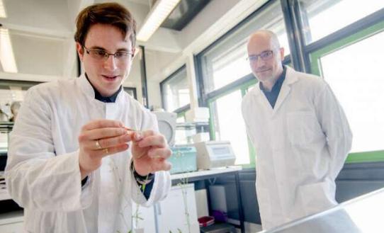 新发现的受体有助于窥视进化