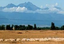 为濒临灭绝的蒙大拿州大草原捕捉40年的气候变化