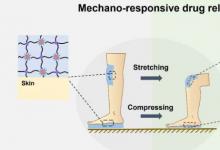 机械响应水凝胶可用于伤口愈合
