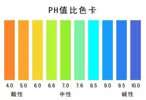 pH值对我们大脑的运作方式以及在患病状态下大脑的功能失常的影响
