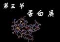 首次酶促生物催化生产核酸构件