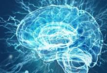 研究表明经济活动可以积极改变大脑