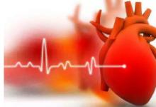 先天性心脏病的基因网络揭示