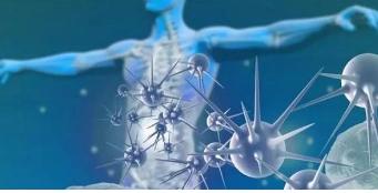 RNA的基因调控片段可能有助于乳腺癌转移