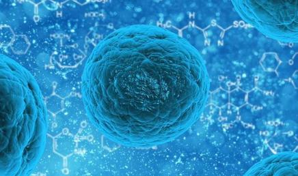 蛋白质扭曲和挤压赋予癌症耐药性
