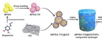 基于纤维素纳米原纤维的包封结构以控制药物释放